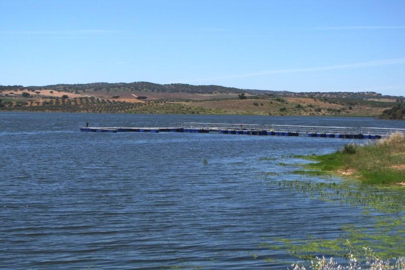 Lago 13